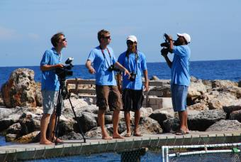 Film- en fotocrew Dolphin academy
