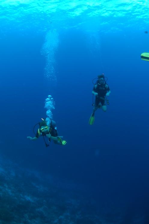 Afdalen in de zee