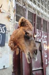 Medina, vleesmarkt