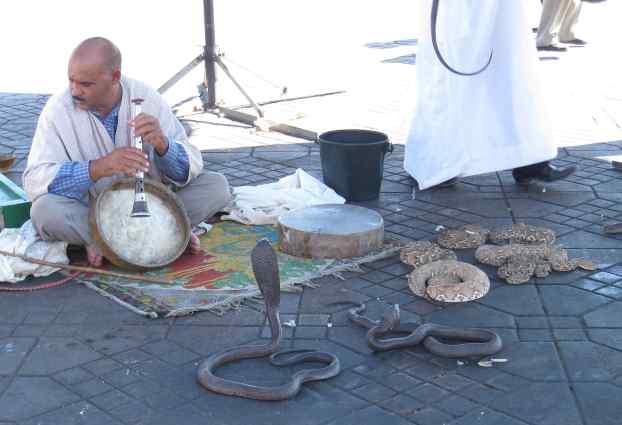 Slangenbezweerders