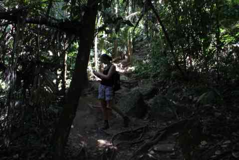 Jungletrekking 1,7 km omhoog