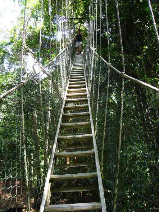 Op de touwbruggen