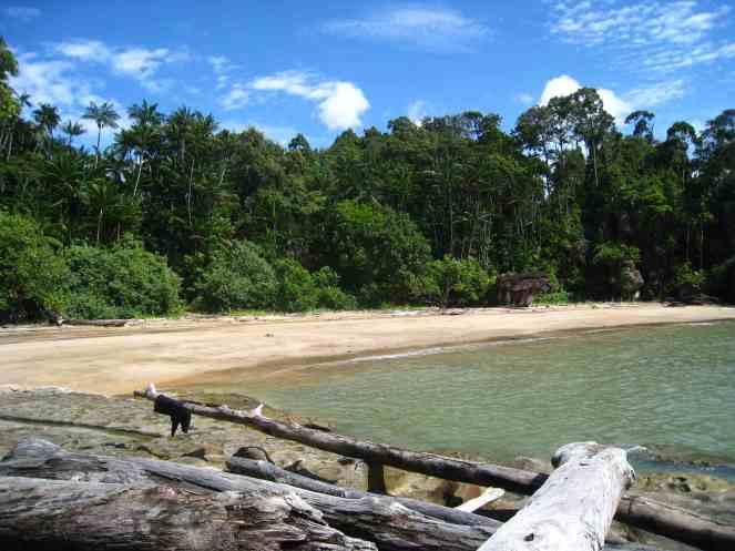 Bako NP, strandje waar we op uitkwamen