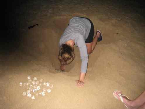 Eieren opgraven