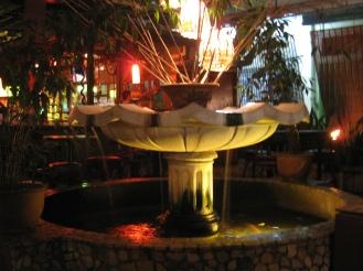 Fontein waar tilapiavis in zwom