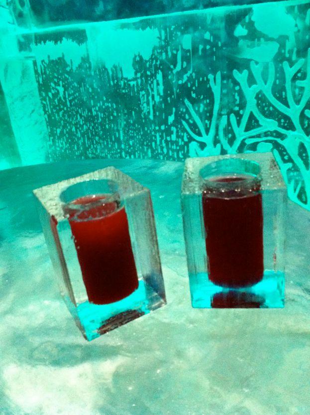 Drankjes in de icebar