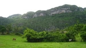 Vinales national park