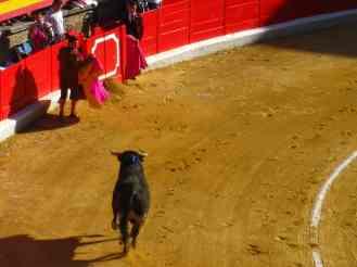 Corrida de toros, part l