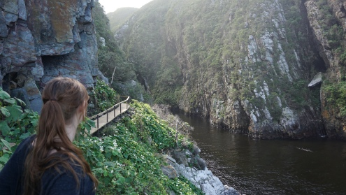 Tsitsikamma NP, de canyon