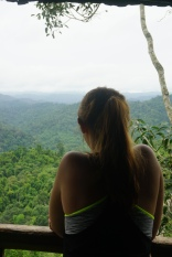 Uitzicht vanuit treehouse #3