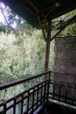 Treehouse #1, open air shower