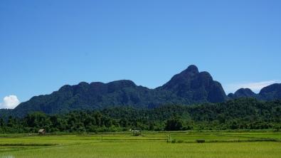 Karstgebergte en rijstvelden