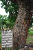 Killing fields, boom waar men baby's tegen dood sloeg