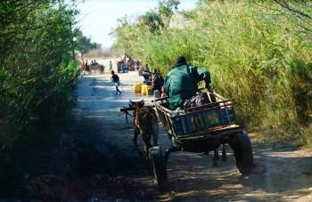 Lokale transportmiddel